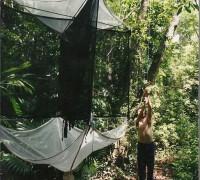 Instalation d'un piège de canopée, Bélize