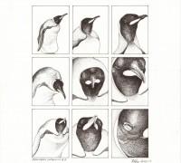 Dessin - peinture - illustration scientifiques - logo & tampon - menuiserie créative - Sculpture