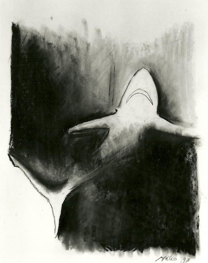le grand blanc - Mathieu Antonio Hélio RAPP