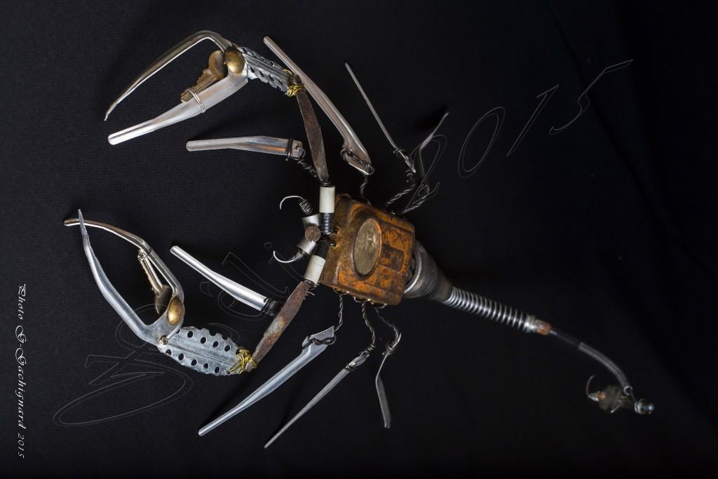 Luminoscorpius elegans - Mathieu Antonio Hélio RAPP