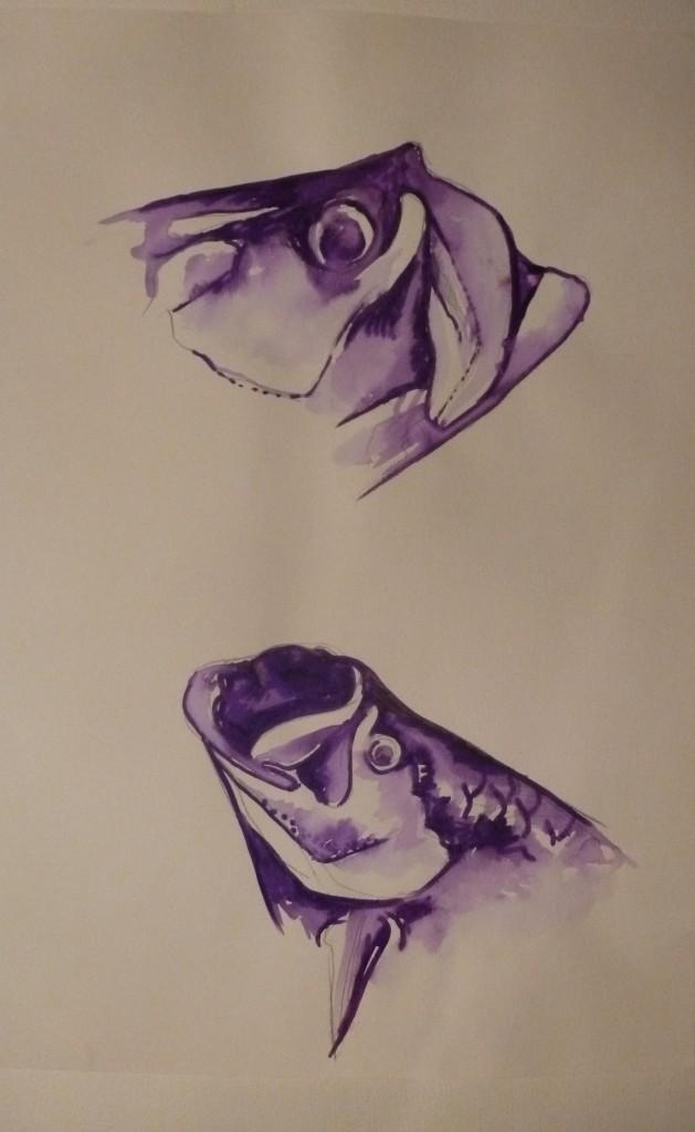 Purple tarpon - Mathieu Antonio Hélio RAPP