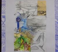 Collage Subantarctique 5